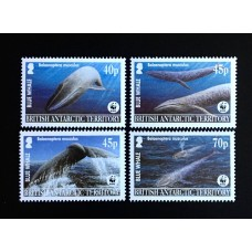 2003 - WWF,  The blue whale ( the baleen whale) - 4v